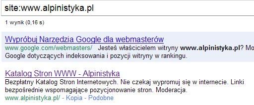 site w google dla www.alpinistyka.pl