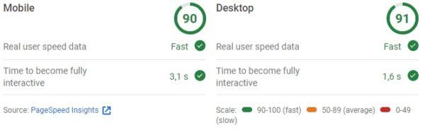 szybkość strony ocena